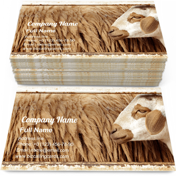 Sample of Wool sheep in farm calling card design for advertisements marketing ideas and promote wool farm branding identity
