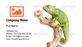Graceful Chameleon Business Card Template