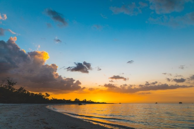 The Guide for Traveling to Fort Myers on Business