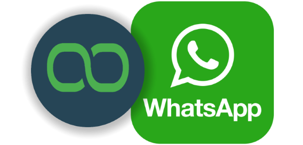 Using WhatsApp Bot API for Improved Customer Interaction
