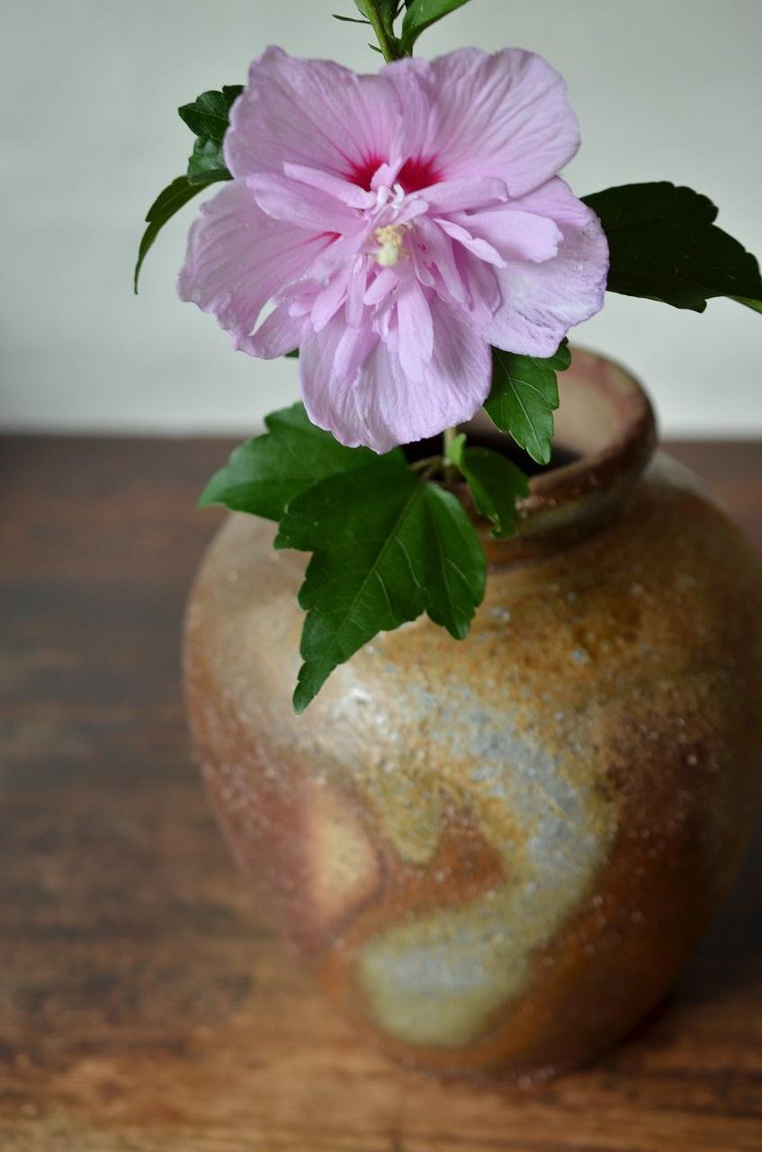 備前壺 Mamoru Taku -紫玉木槿-
