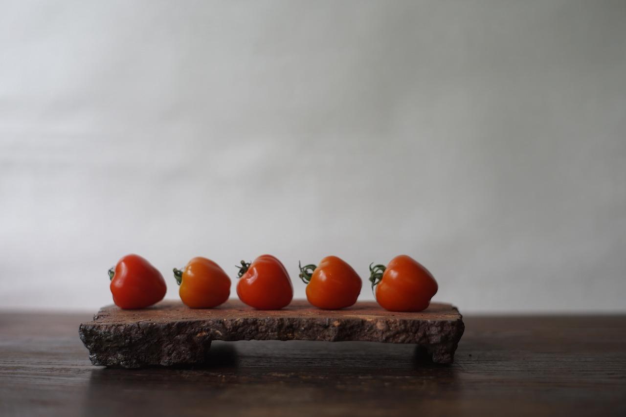 台付陶片長方皿 Takahiro Hosokawa -イチゴみたいなトマト-