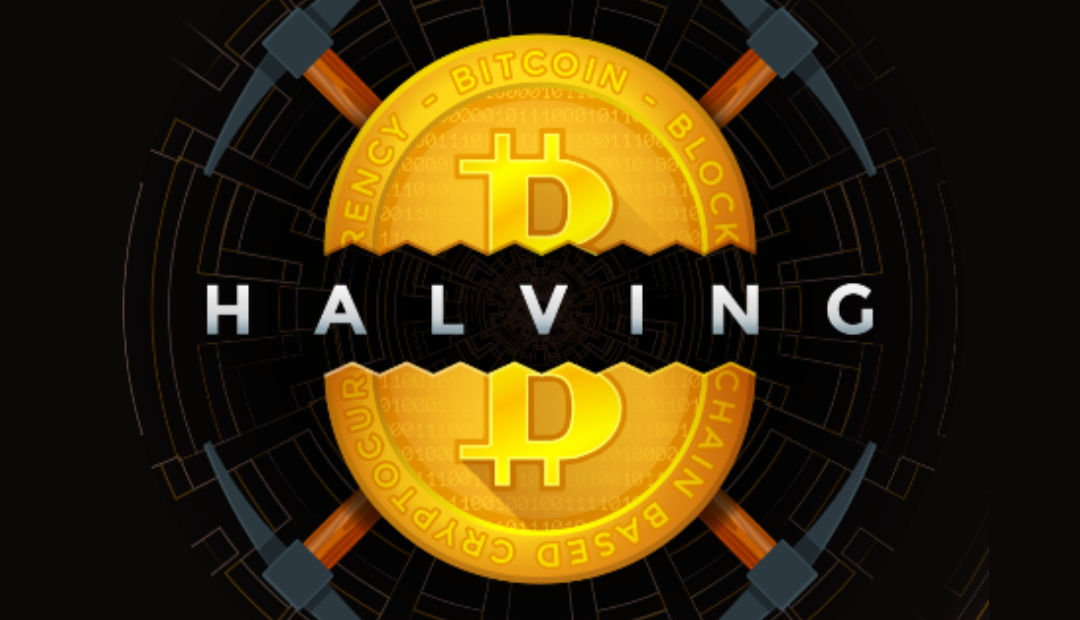 Bitcoin Halving: Here's What You Should Know About  (Infographic)