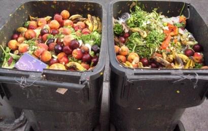 Risipa alimentară, marea problemă a românilor