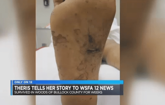 How a woman survived in the woods for weeks