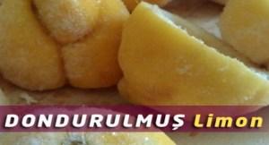 dondurulmus-limon-bizsiziz-com