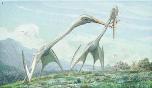 İki büyük, uzun boylu, azhdarchidler (Arambourgiania philadelphiae), Maastrichtça türü küçük bir theropod üzerinde tartışıyor. PeerJ (2017). DOI: 10.7717 / peerj.2908