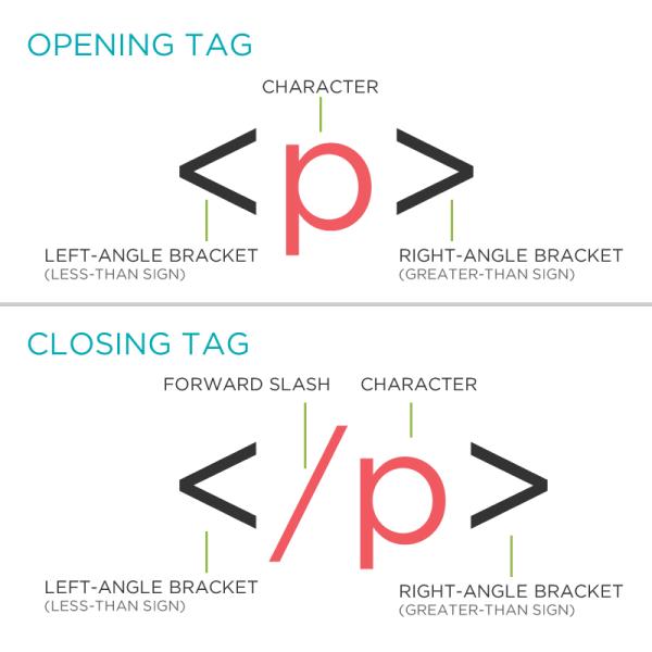 Section 1 ~ HTML/CSS ~ BizStream Academy