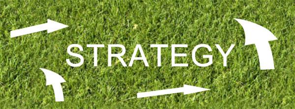 business strategy for newbie