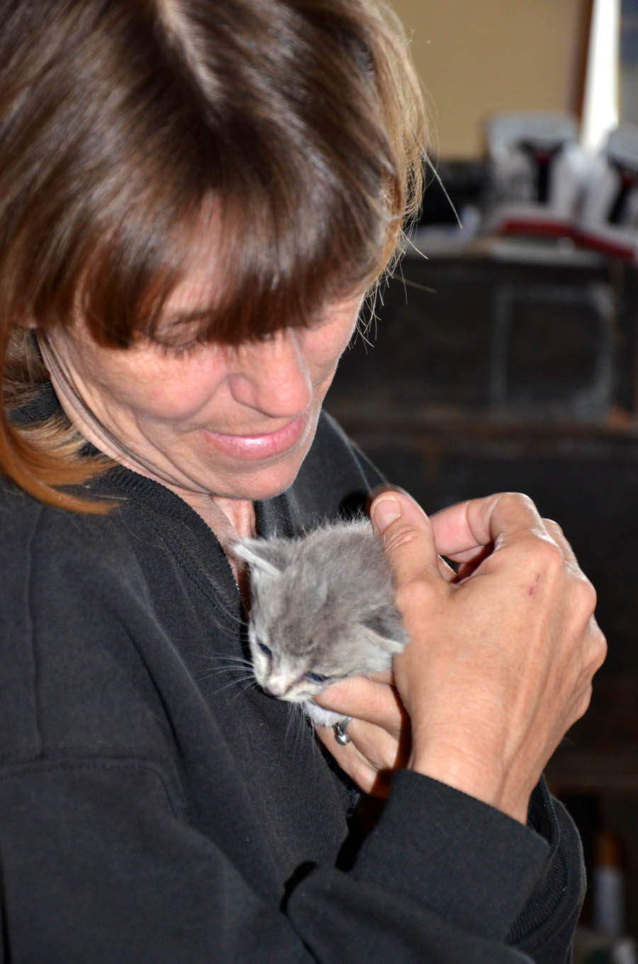 Catworking through Kim and Baby Kitty