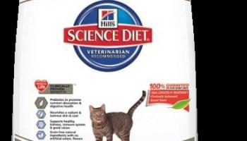 Hill's Grain-Free Cat Food