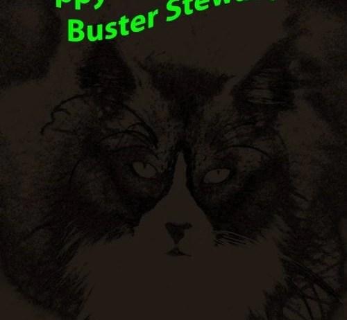 Happy #Caturday #BlackandWhite style from this Tuxedo Cat.