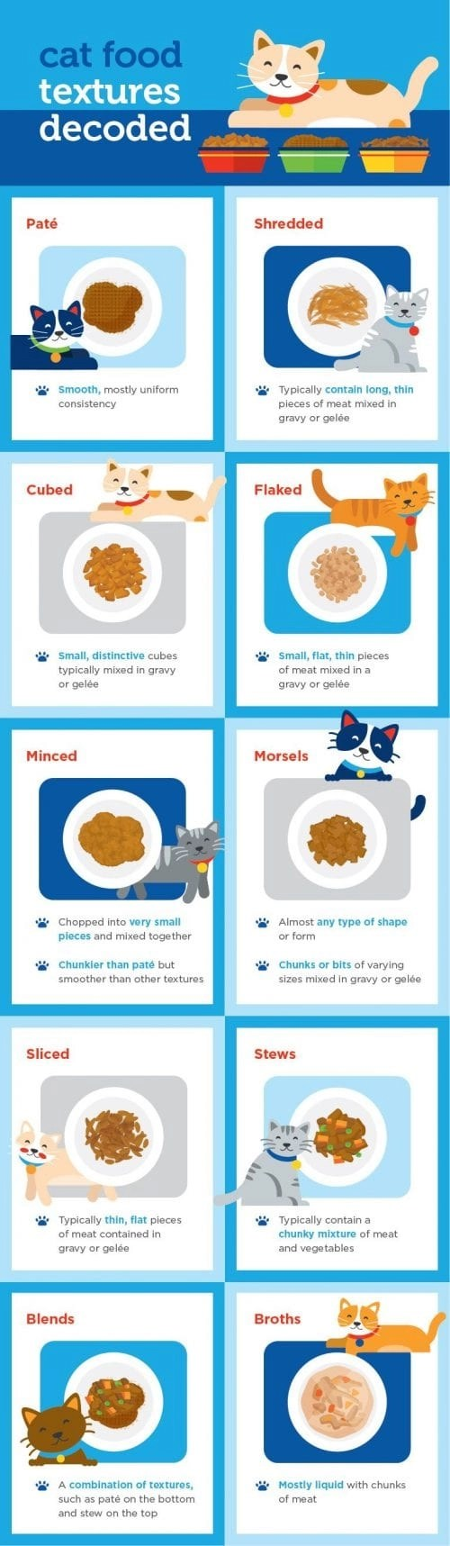 Canned Food Options for Your Feline Friend Infographic