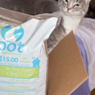 Cat Stop - a new type of cat litter