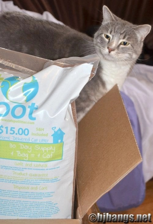 CatSpot - a new type of cat litter