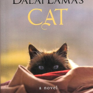 The Dalai Lama's Cat teaches us living in the moment makes us happy