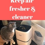 Okaysou's Air Purifier keeps air fresher and cleaner for cats and their humans