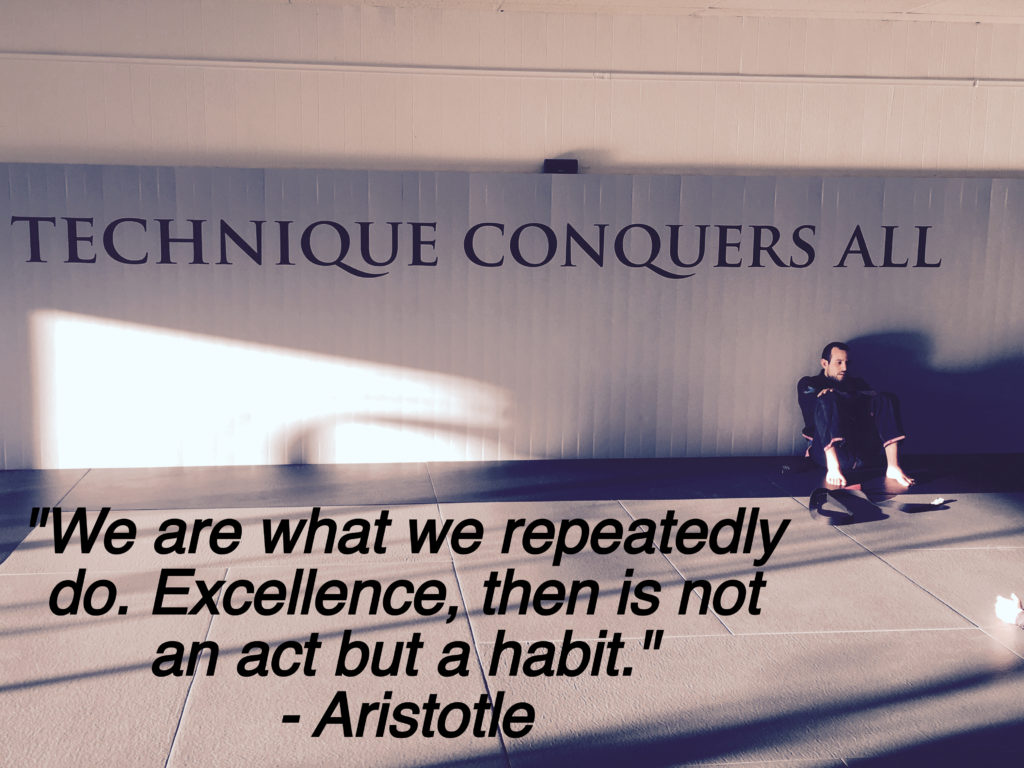 "We are what we repeatedly do.  Excellence i not an act, but a habit"" - Aristotle"