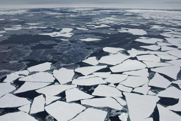 Floating ice floes along one edge of Fram Strait. Photograph: Denis Sinyakov/Greenpeace