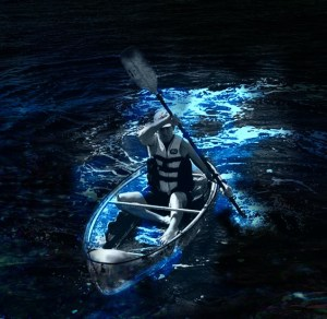 Clear Kayaking Bioluminescent