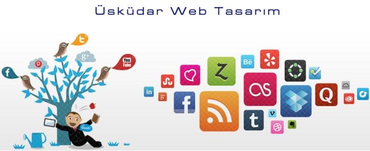 Üsküdar Web Tasarım