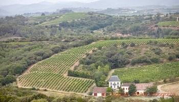 Tva Fair 2020.Vinomed New Wine Fair In Montpellier 27 28 April 2020