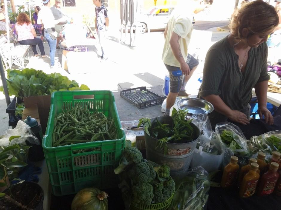 locally grown produce puerto rico - sana at farmers market in rincon
