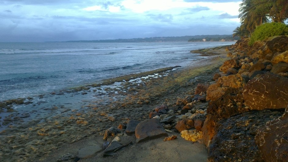 The black and gold coast turns into a rocky shoreline