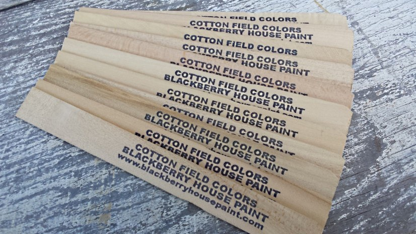 Paint Sticks, 9″ pack of 12