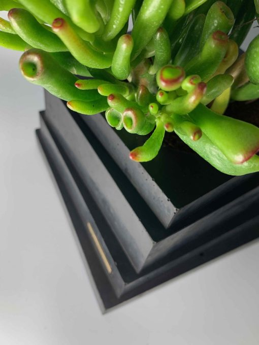 BLACKBETON - ARTISANAT D'ART - Collection végétale - TALOUL - béton noir