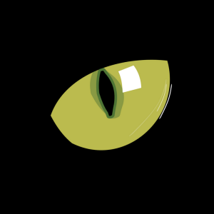 Black Cat Green Eye