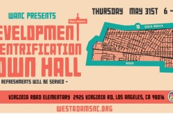 Development and Gentrification Town Hall