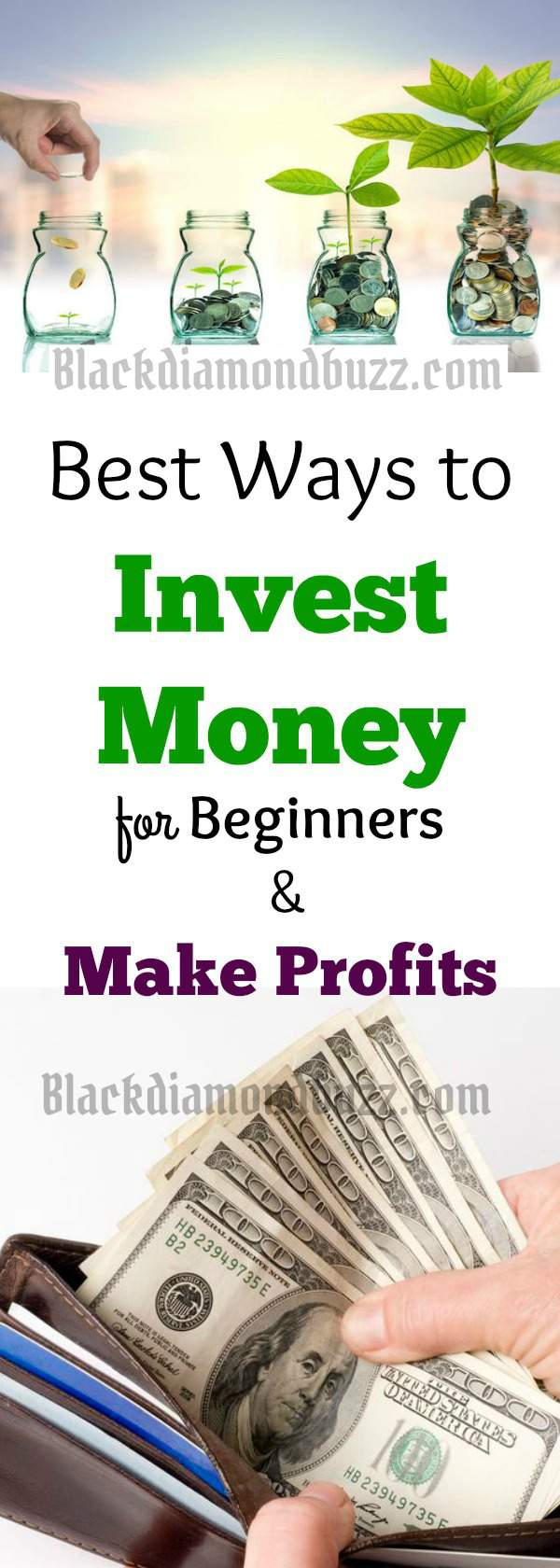 15 Best Ways to Invest Money for Beginners to Get Good Returns