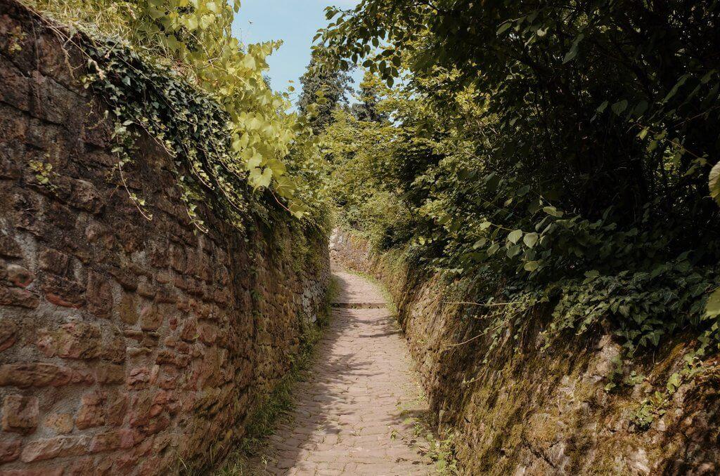 Heidelberg insider tips slangenpad
