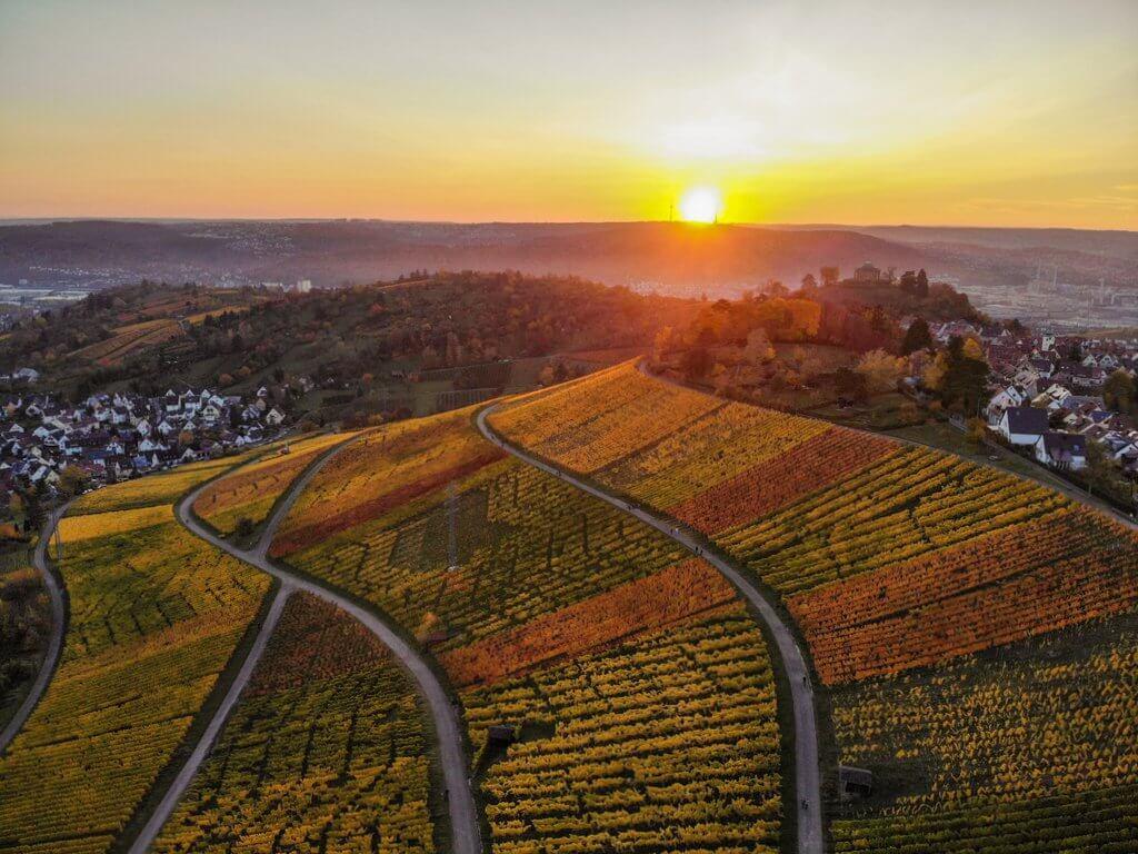 De zonsondergang van wijngaarden Stuttgart Rotenberg