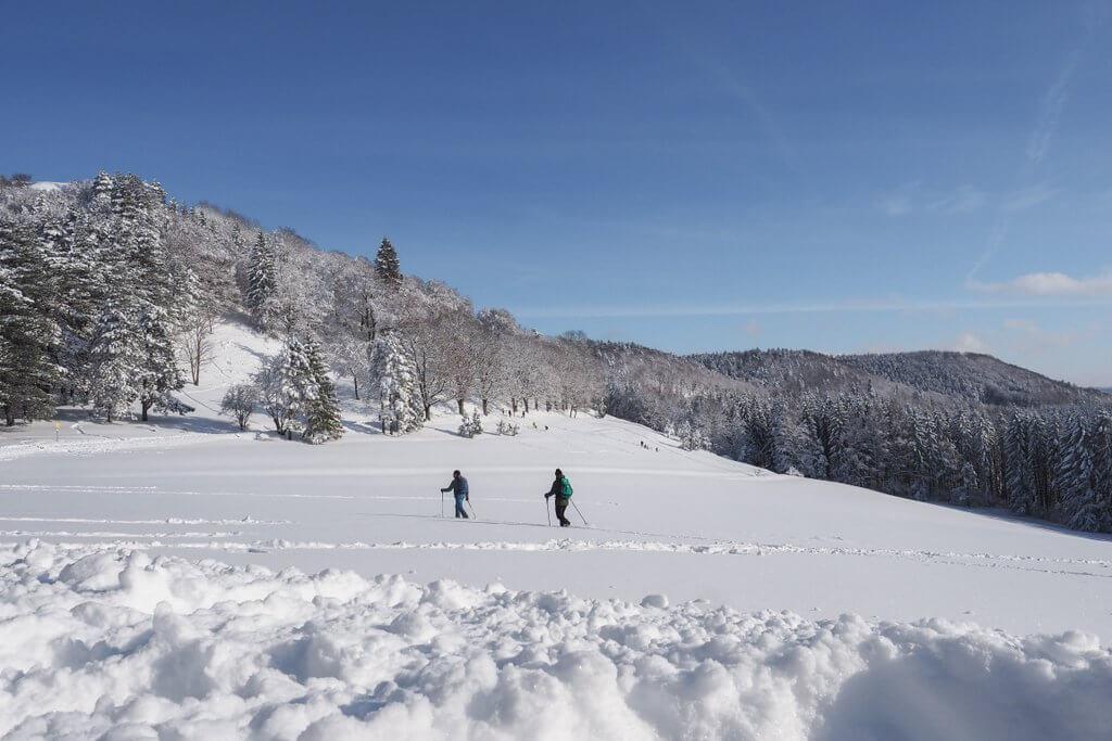 Winterwandelen Lochen Balingen