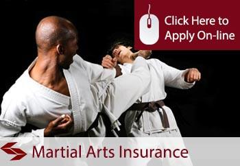 martial arts teacher insurance