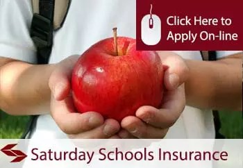 self employed Saturday schools liability insurance