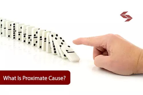 what is proximate cause