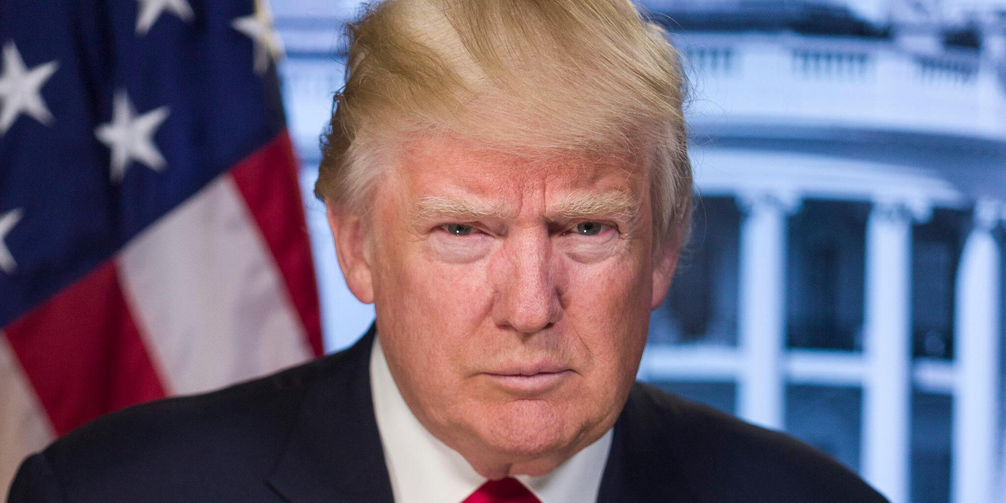 Trump-portrait