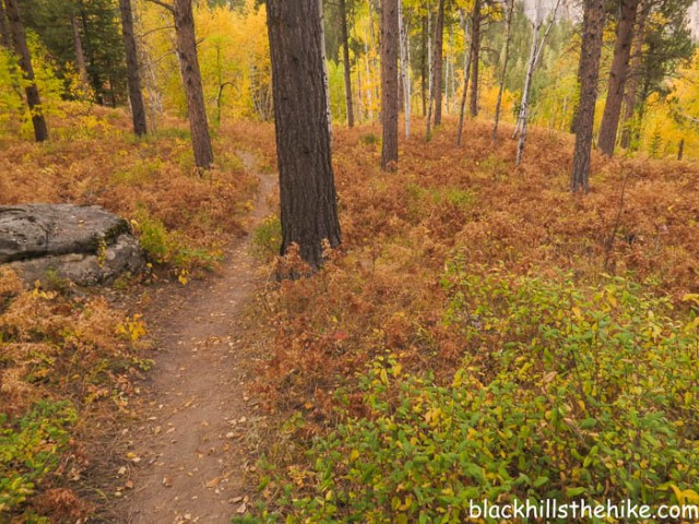 A Fall hike on the '76 Trail in Spearfish Canyon