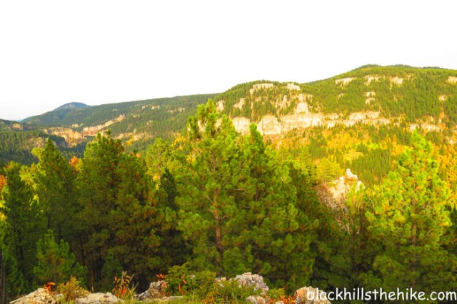 At the top of '76 Trail in Spearfish Canyon