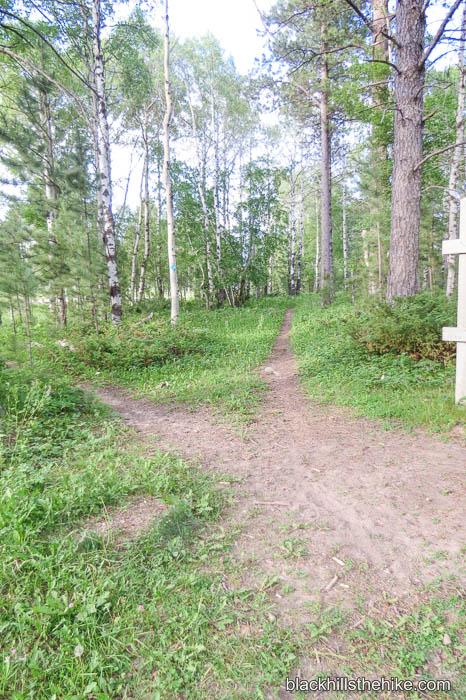 Big Hill Trail A1