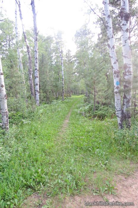 Big Hill Trails Hiking