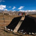 Black Tents of Kedar