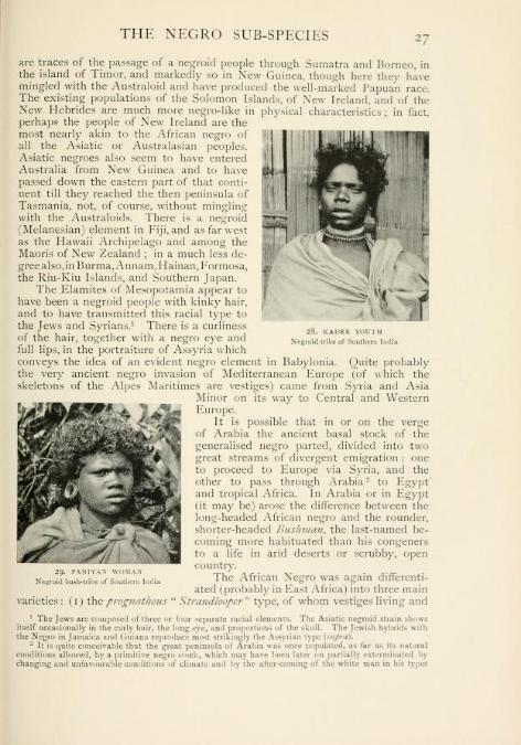 Negro In The New World, Jamaican Hebrews, Elamites