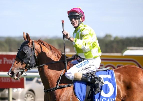 Craig Robertson returns on Distant Sky (NZ) at Sportsbet-Ballarat, March 12, 2018 (Pat Scala/Racing Photos)