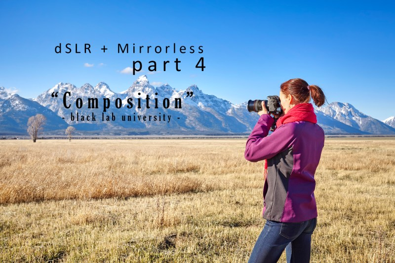 dSLR Photography: Composition