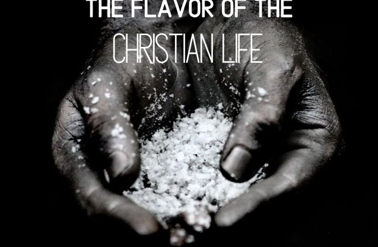 The Flavor Of The Christian Life