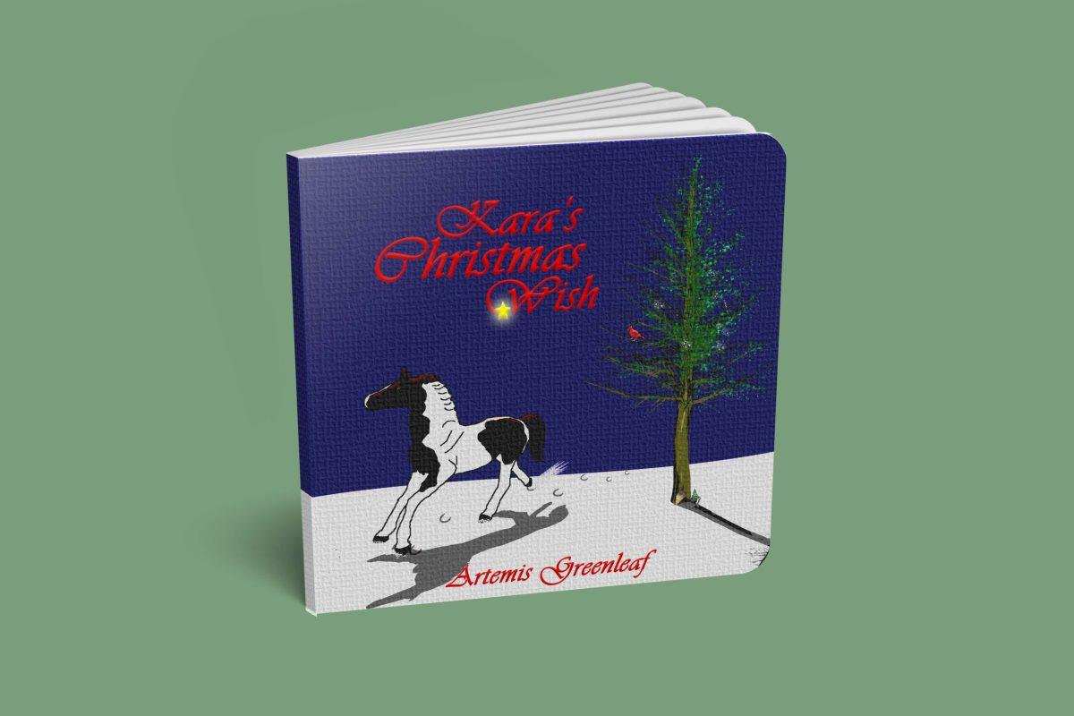 Kara's Christmas Wish